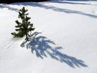 Untouched snow with interesting shadows like this are one of the draws of snowshoeing trips.