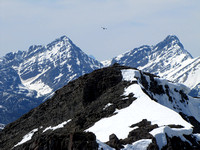 A Raven soars above GR103598 with Sundance Peak in the distance on the right.