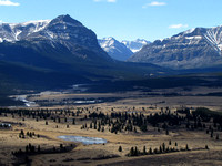 Even though this view wasn't from the top, this is my favorite shot of the day as I think it really represents the Ya Ha Tinda quite well. Banff National Park boundary is to the right of Warden Rock.