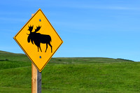 The new Moose crossing signs have a stylized animal which reminds me of a cartoon character.