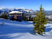 I am not sure what this shed is for, but I loved the the tree, the shadows on the perfect snow, and Yamnuska in the distance.